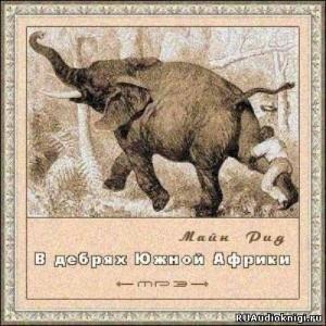 В-дебрях-южн-африки-300x300